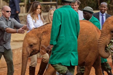 Whoops! Orphaned elephant jostles Melania Trump