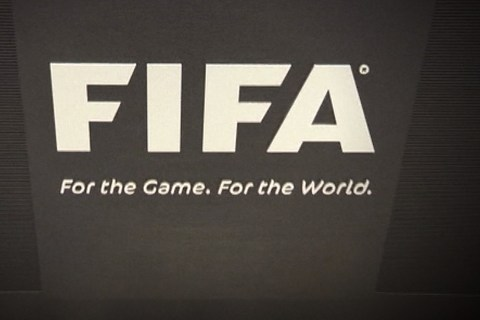 How FIFA Works
