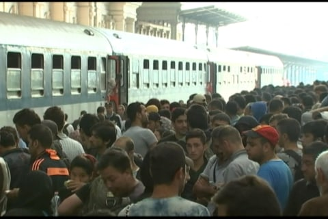 Wild Scenes as Migrants Enter Budapest Rail Station, Crowd Train
