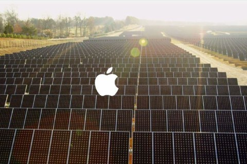 Tim Cook: Apple Spaceship Campus Will Be 'Greenest' on Planet