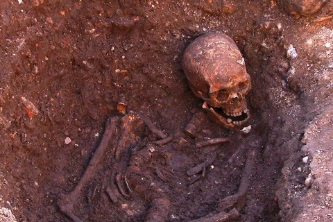 Bones Tell the Grisly Tale Behind King Richard III's Death