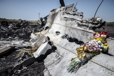German Victims' Families to Sue Ukraine Over Downing of MH17