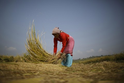Hungry Planet: Can Big Data Help Feed 9 Billion Humans?