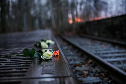 'We Cannot Forget': Survivors Return to Auschwitz on Liberation Anniversary
