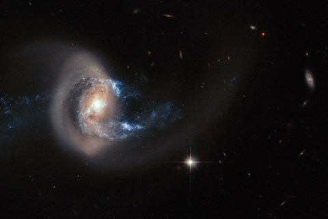 Hubble's Latest Hit: Galaxy Gets Caught in Gravitational Tangle
