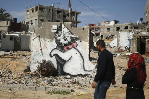 Internet Cats: Banksy Kitten Highlights Gaza's Plight