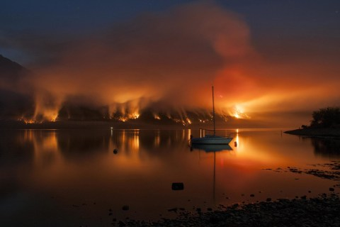 Forest Fire Destroys Argentinan Wildlife
