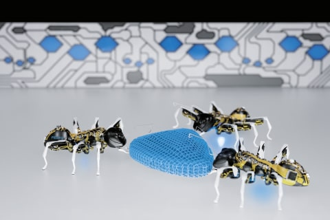 Bionic Animals Mimic Ants, Butterfl
