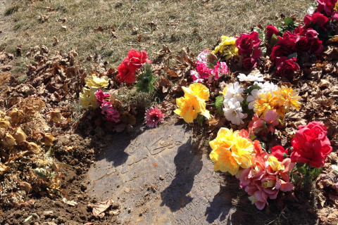 Michigan Muslim Man Finds Stranger Buried Next to Wife, Again.