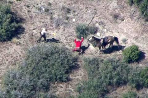 Deputies in Violent Beating of SoCal Horse Thief to Face Criminal Charges