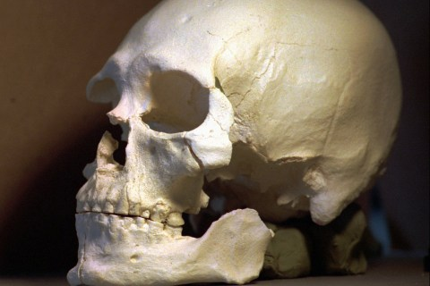 Case Closed? DNA Links 8,500-Year-Old Kennewick Man to Native Americans
