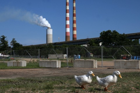 Rising Number of Local Governments Pledge to Cut Greenhouse Gas Emissions