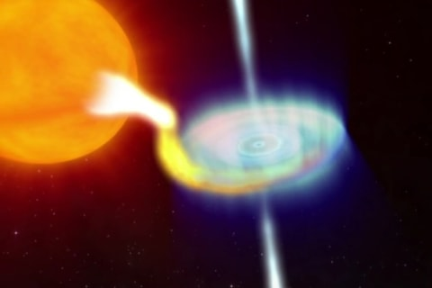 Scientists Watch Black Hole Have Leisurely Meal