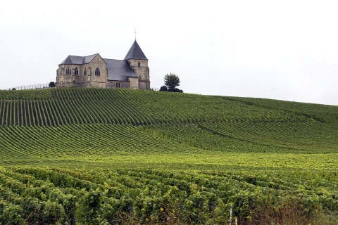 French Wine Regions Champagne, Burgundy Win World Heritage Status