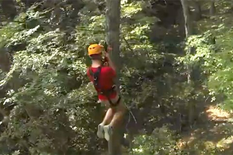 Zipline Injuries Soar, Study Finds
