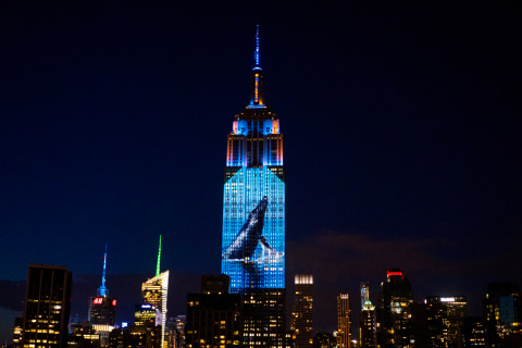'Racing Extinction': Documentary Explores Global Loss of Wildlife