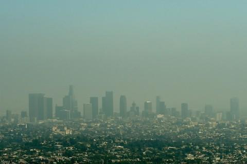 Polls Show Most Latinos Back Strong Environmental Policies