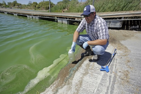 Toxic Algae Closes Utah Lake, Sickens 100