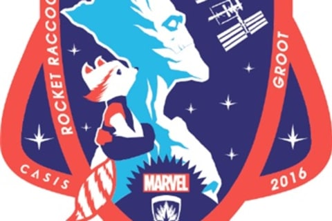 Marvel's Rocket Raccoon and Groot Are Headed to Space
