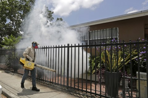 Another New Zika Case Found in Florida