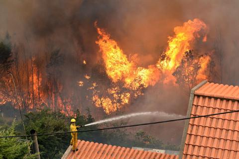 Massive Fires Rage in Portugal
