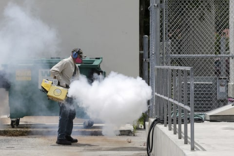One Florida Zika Outbreak is Almost Over