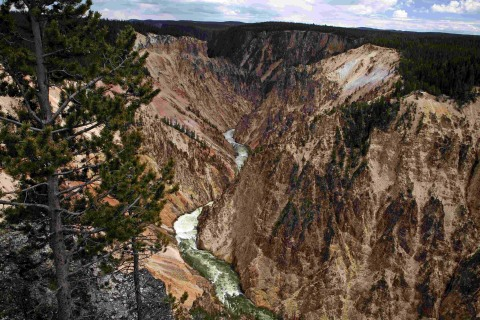 Yellowstone National Park Worker Falls to Her Death From Wyoming Cliff
