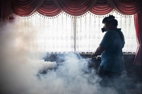 Double Dose of Pesticides Stops Zika Mosquitoes, CDC Says