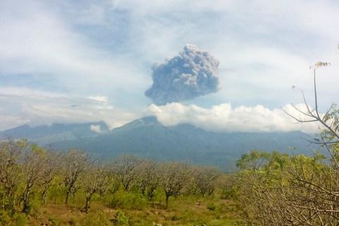 Indonesia's Mount Barujari Volcano Erupts, Trapping Tourists