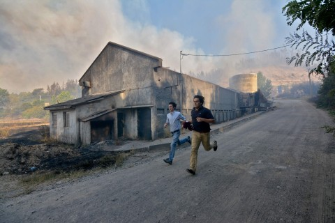 Chile Ravaged by Worst Fires in Its History