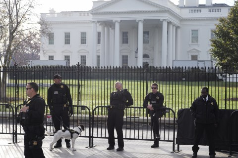Woman Left Dangling by Shoelaces After She Jumped White House Fence