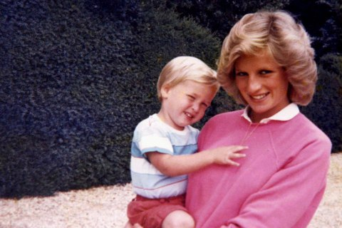 Princes William, Harry Remember Their Final Call With Diana