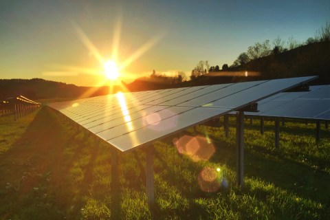 Solar Panels Go Green — Literally. Here's Why That's a Big Deal
