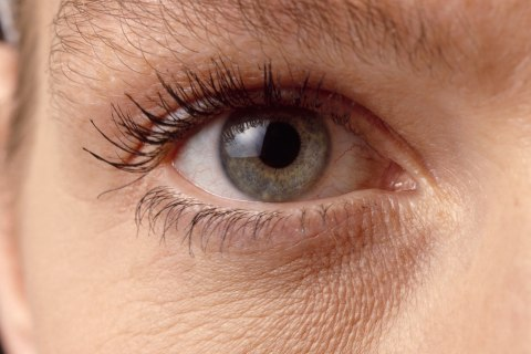 Scientists Foresee Fixes Even for Complicated Forms of Blindness