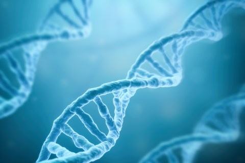 DNA databases can send the police or hackers to your door, study finds