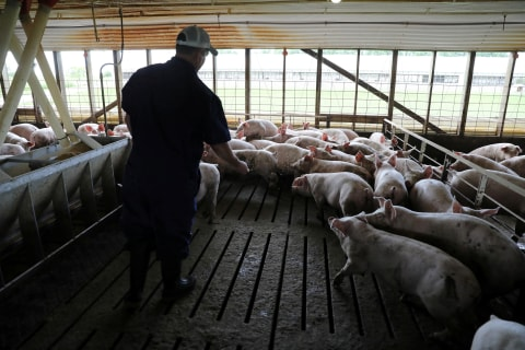 Midwest farmers take trade woes, frustrations to Capitol Hill
