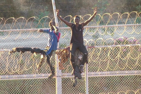 Migrants storm fence to enter Europe at Spain's Ceuta