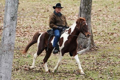 Poll: Roy Moore leads Republican field to challenge Doug Jones