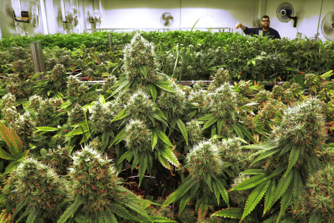 Illinois poised to be 11th state to legalize recreational marijuana use