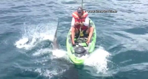 Shark Pulls Florida Fisherman From Kayak