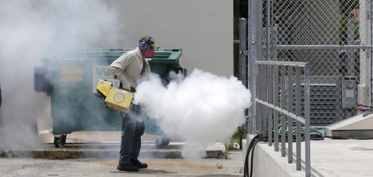 Zika Virus Was Spreading Quietly a Year Before Anyone Knew, Gene Study Shows