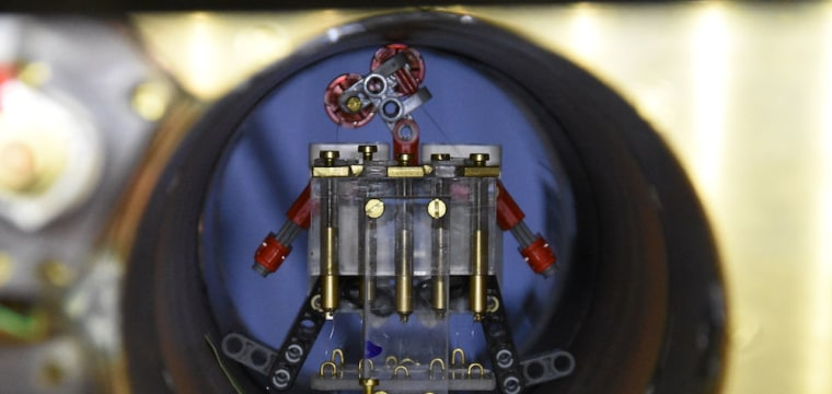 These Tiny Robots May Bring Big Change to Cancer Care