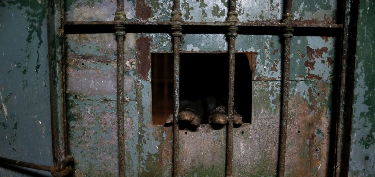 A Year After Zoo Closure, Animals Still Caged in Buenos Aires