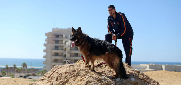 Hamas Bans Dog Walking in the Gaza Strip