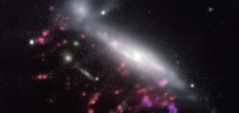 'Jellyfish' Galaxies May Help Solve Mystery of Monster Black Holes