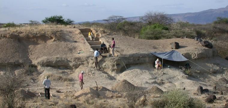 Did climate change help modern humans emerge?