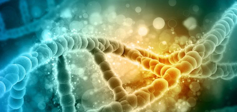 Multigene test may find risk for heart disease, diabetes and breast cancer