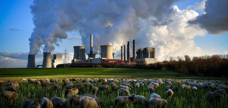 Nations at U.N. climate talks back universal emissions rules