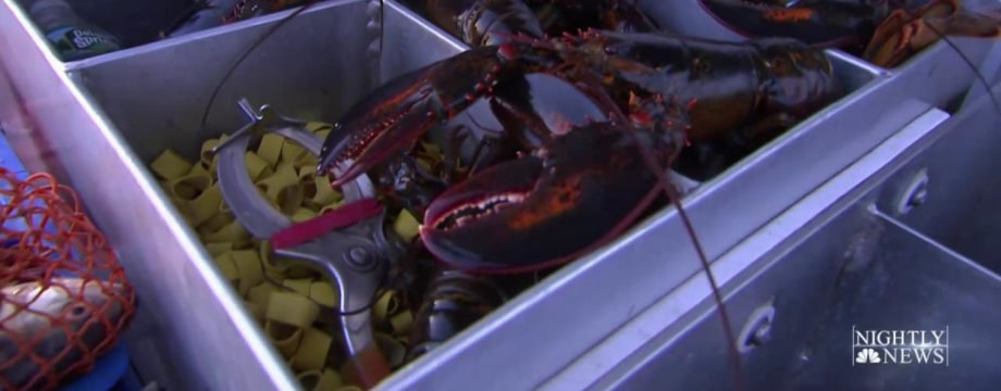 Lobster Emoji? Maine is Pushing for It