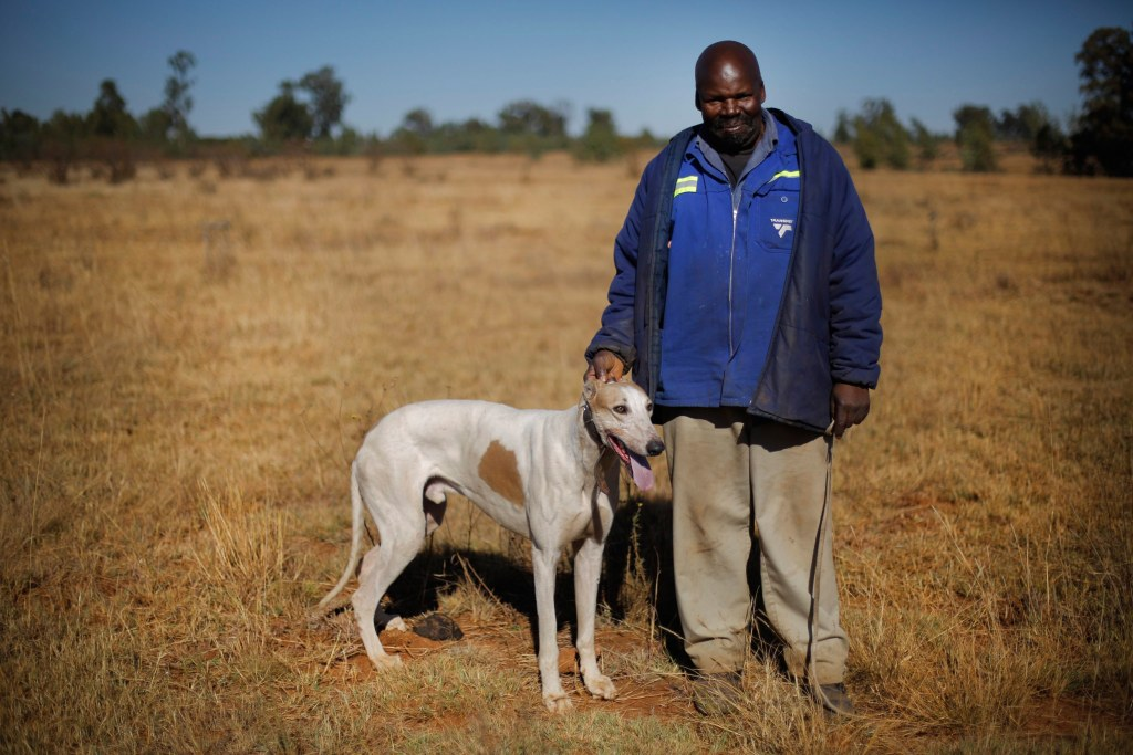 Traditional Dog Hunting in South Africa Faces Growing ...